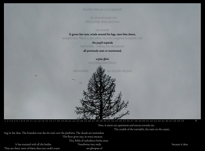 "Screen capture from ""Väljarna"" (""Elect"") by Johannes Heldén. Grey background with the silhouette of a pine tree in the middle. There are various lines of text on the image. Text: The lines of text are too small to read."