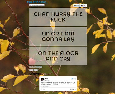 "Screen capture from ""Tweet Haikus"" by Brandon Wood. Background screenshot from a branch with yellowish leaves with three grey text boxes with two lines of text each. Text: CHAN HURRY THE / FUCK"" ""UP OR I AM / GONNA LAY"" ""ON THE FLOOR / AND CRY"""
